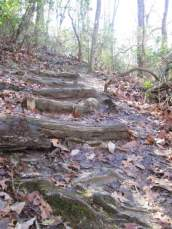 Mtns-to-Sea-Trail-NC-1-25-2017